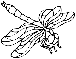 Small Picture Dragonfly Coloring Pages GetColoringPagescom