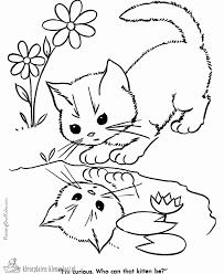 Poesjes Kleurplaat Mooi Cat Kleurplaat Eenvoudig Kleurplatenwereld