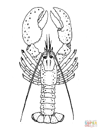 Small Picture Lobster coloring page Free Printable Coloring Pages