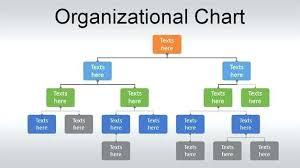 Organisational Charts Template Jimbutt Info