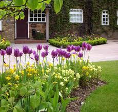 Small Picture Garden Design Garden Design with Welcome to Suzie Nichols Design