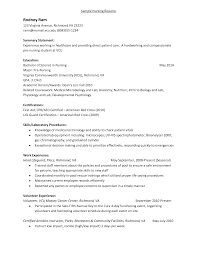 Lifeguard Resume Description Sidemcicek Com