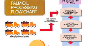 Palm Oil Chart Palm Oil Mill Processing Flow Chart Www Bedowntowndaytona Com