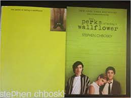 "n american teen s letter to author stephen chbosky wins   after reading his book ""the perks of being a wallflower "" won a national award for the n american teen in a letters about literature essay"
