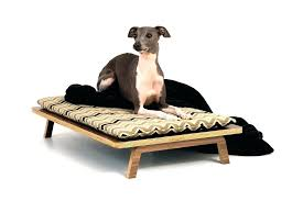 modern pet furniture. Article Thumbnail Modern Pet Furniture For Sale . Dog Bed House  S