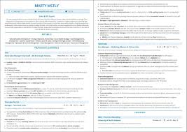 Best Sales Resume Top 10 Best Sales Resume Templates 2019 Samples