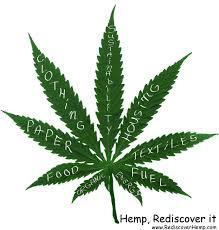 Plant Nutrient Deficiency Chart Cannabis Leaf Nutrient Deficiency Chart Bedowntowndaytona Com
