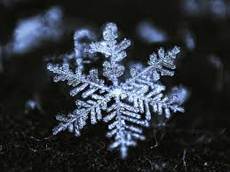 a new meaning of the word snowflake