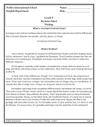Compare Two People Essay Writing Revision