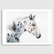 stetson horse art print by margaret petchell