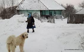 Image result for poze bucuresti iarna