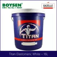 Titan Superflex Color Chart Titan Superflex Elastomeric Paint White 4l By Boysen