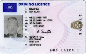 Irish 'can - News Irish' Have Driving Licence Motorists Name The In On