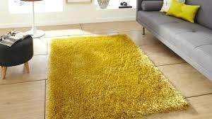homey ideas high pile area rugs rug canada incredible 1
