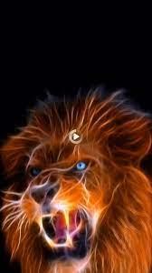 Lion ?   Lion live wallpaper, Cool live ...