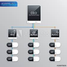 Organize Chart Infographic Business Structure Name Board