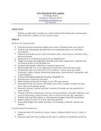 Equine Veterinary Nurse Sample Resume