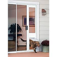 dog going through in glass endura flap