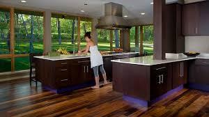 contemporary kitchens with dark cabinets. Dark Kitchen Cabinets Contemporary Kitchens With C