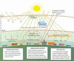 the effects of air pollutants on vegetation and the role of figure 2