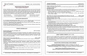 Professional Resumes Awesome Executive Resumes By Certified Executive Resume Writers Executive