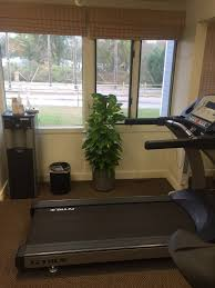 Peabody Light Plant Pdi Plants Blog Sports And Physical Therapy In Acton Ma