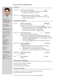 British Cv Example Pdf Professional Resume Templates