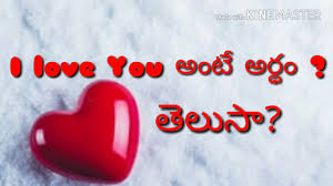 I Love You Meaning In Telugu