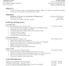 Resume Format College Student Examples Of College Resume Sample
