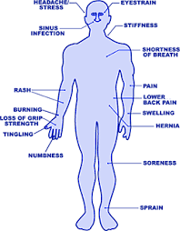Body Part Diagram For Workplace Injuries Wiring Diagrams