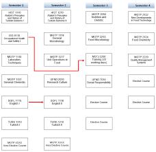 Curriculum Flow Chart Food Technology