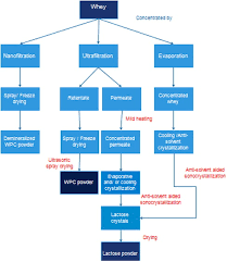 Whey Processing Flow Chart Intensified Recovery Of Valuable Products From Whey By Use