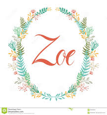 Zoe Flowers Designs Llc Brownsville Tx Frame Of Flowers And Ferns With Girl S Name Zoe Stock Vector