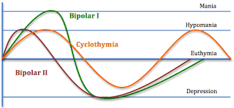 Bipolar Disorder In Adults Information For Primary Care