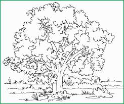 Adult Coloring Pages Nature Pleasant Nature Coloring Pages For