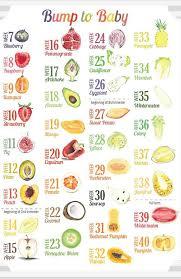 63 Cogent Pregnancy Baby Size Chart Fruit