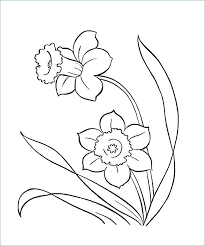 Flower Coloring Pages Pdf At Getdrawingscom Free For Personal Use