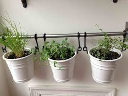 Wall Plant Hanger Indoor For Apartment