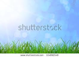 grass and sky backgrounds. Green Grass On The Sky Backgrounds And