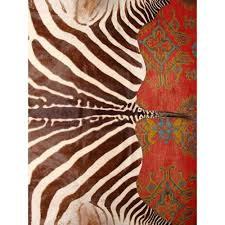 genuine zebra skin hide rug