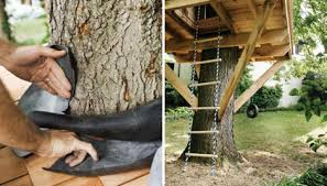 simple tree platforms. How To Build A Treehouse For Your Backyard Diy Tree House Plans Simple Platforms E