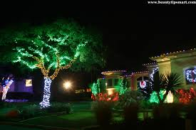 Backyard Lighting Ideas PICTURESChristmas Lights In Backyard
