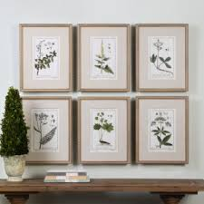 uttermost green floral botanical study wall art set of 6 on wall art set of 6 with 6 piece wall art hayneedle