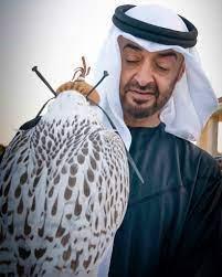 صاحب السمو الشيخ محمد بن زايد آل نهيان – سيف النعيمي