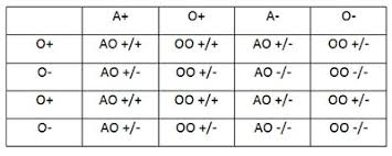 parent blood types chart understanding genetics