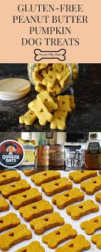 Country Kitchen Dog Treats 25 Best Ideas About Grain Free Dog Food On Pinterest Dog Snacks
