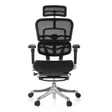 high end office chairs. ERGOHUMAN PLUS LEGPRO Mesh - High End Office Chairs E