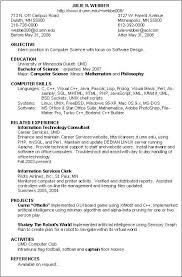 Information Technology Professional Resume Resume Sample