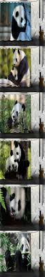 custom cute baby fantastic panda shower curtain waterproof bathroom fabric shower curtain for bathroom free