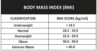 Bmi Chart Kg M2 This Body Mass Index Calculator Gives You Exact Bmi Looks
